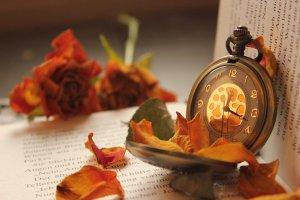 golden_shine_by_silvermoonswan-d5m0hht